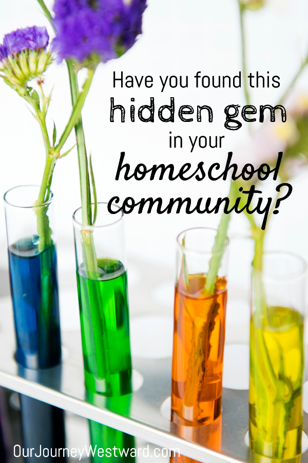 Have You Found This Hidden Homeschooling Gem in Your Community?