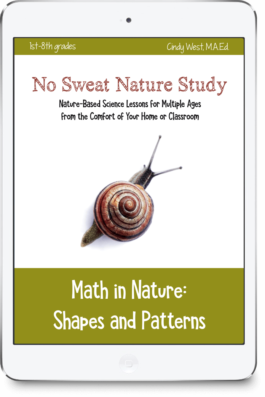 No Sweat Nature Study: Math in Nature Curriculum