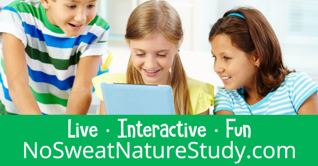 Let Mrs. Cindy help you teach science through nature study from the comfort of your home!