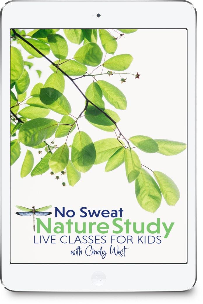 No Sweat Nature Study LIVE Membership