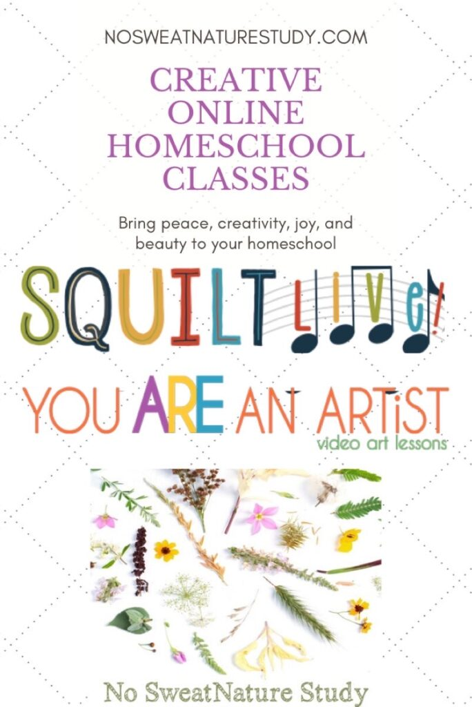 These online classes for homeschoolers can bring joy and real learning into your home or classroom!