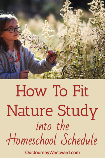 You can fit nature study into the homeschool schedule with these tips!