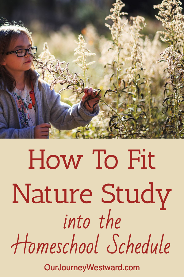 How To Fit Nature Study Into Your Homeschool Schedule