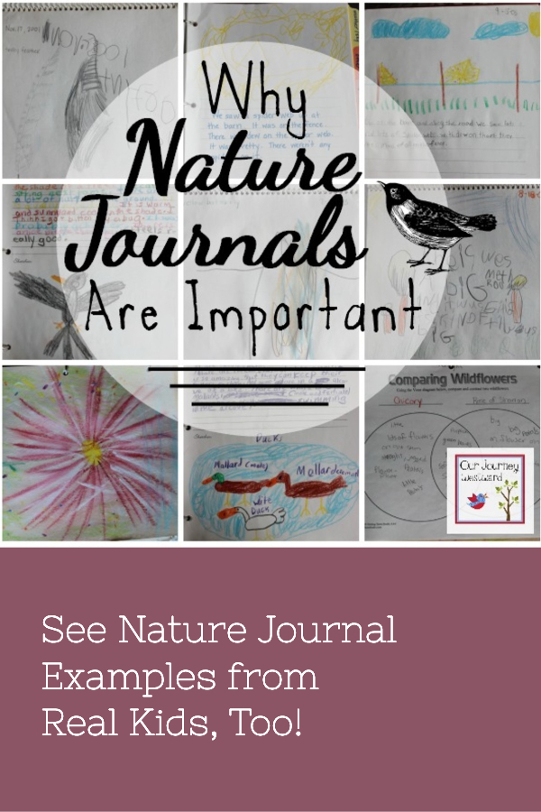 Why Nature Journals Are Important