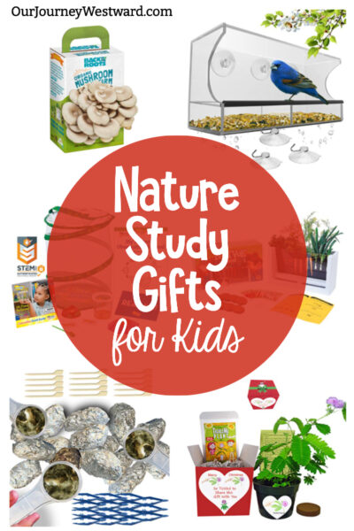 These nature gifts for kids are a fun way to inspire a love for science!