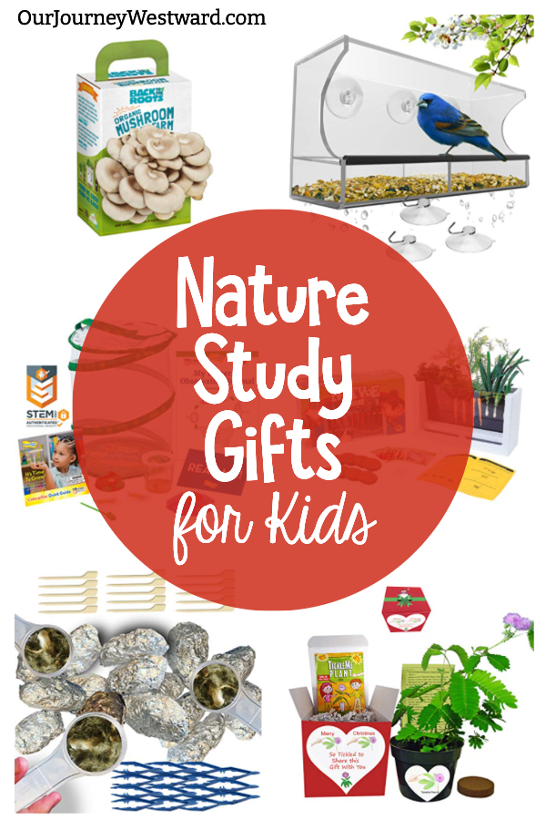 24 of the Best Nature Study Gifts for Kids