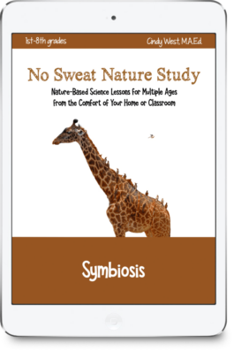 These fun symbiosis lessons are perfect for multiple ages!