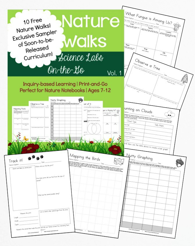40 Nature Walks Sampler Freebie