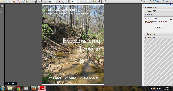 How to Organize Your E-Book Curriculum