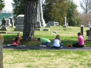 Creation Club – Evergreens, Focusing on Conifers