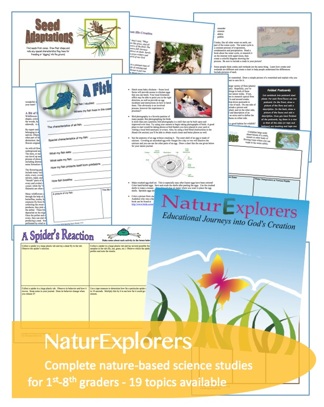 NaturExplorers: fun, in-depth elementary and middle school science lessons