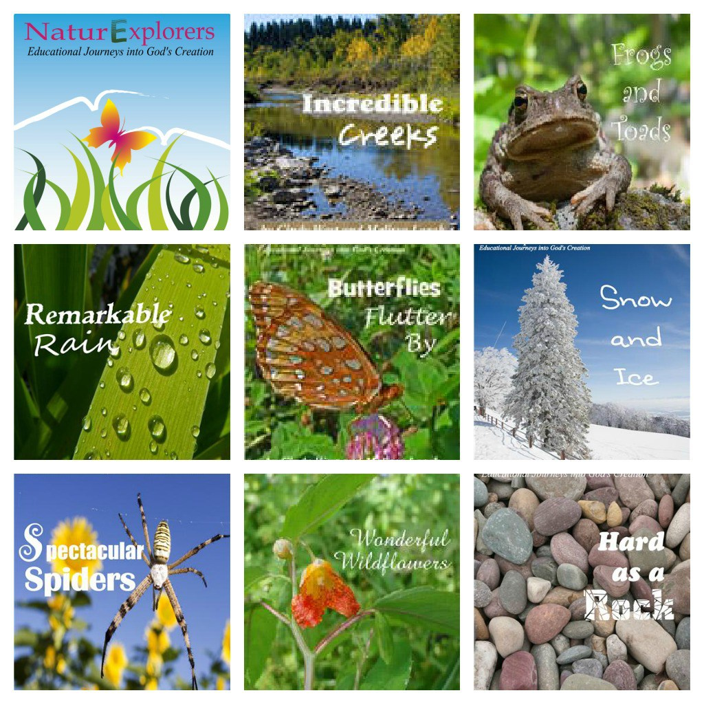 Nature IS Science and NaturExplorers studies help you teach using nature as your science lab!
