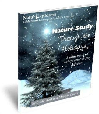 Advent Nature Study Curriculum