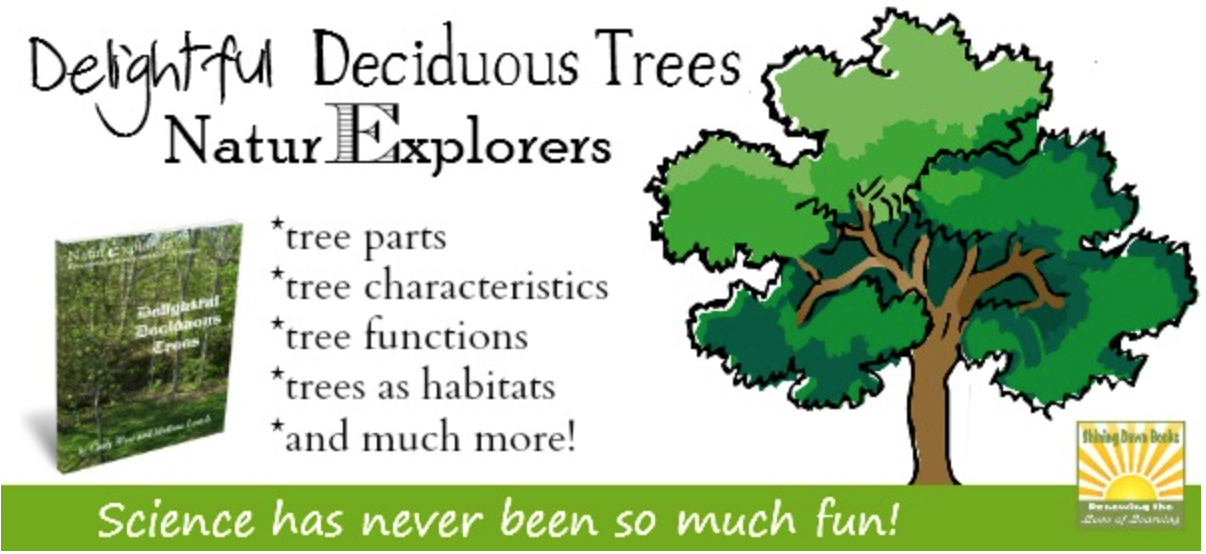 NaturExplorers Delightful Deciduous Trees is a GREAT nature themed science study!
