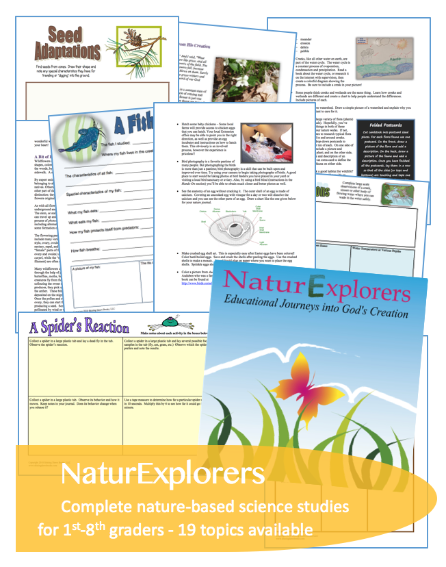 NaturExplorers guides are perfect for the 1st-8th grade homeschool, co-op or classroom. This highly adaptable curriculum series uses nature study as the starting point for science lessons that reach into every other subject and meet all learning styles.