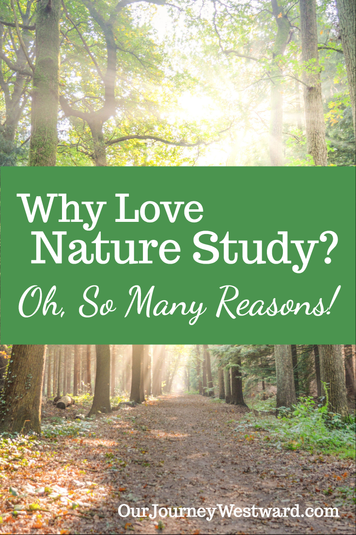 Why Love Nature Study? Oh, So Many Reasons!