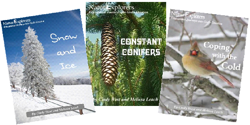 NaturExplorers Winter Curriculum