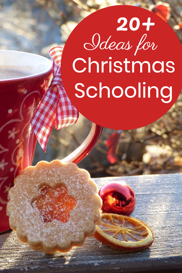 20+ Ideas for Creative Christmas Homeschooling in December