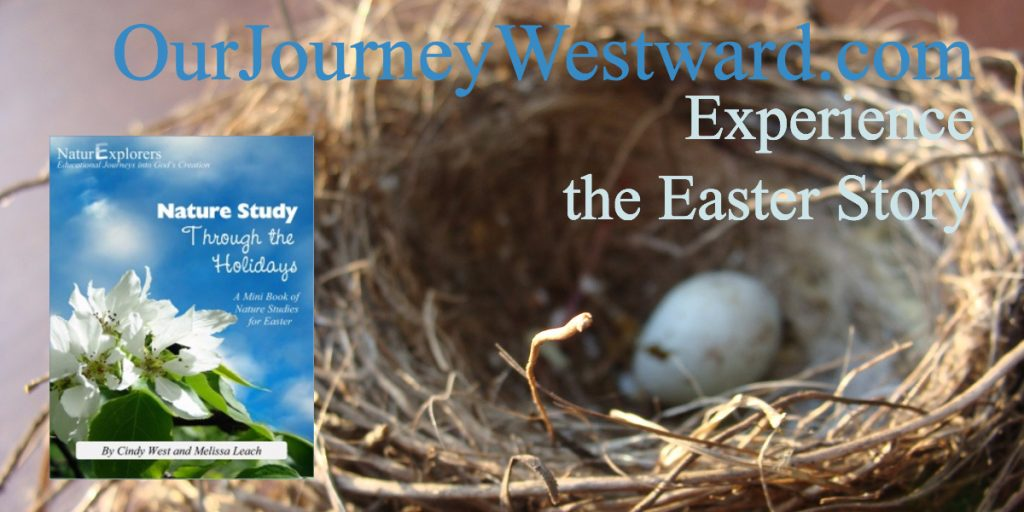 Easter nature study lessons flow together beautifully to teach the Biblical story of Easter. Your whole family will enjoy this Easter experience! Appropriate for classrooms and co-ops, too.