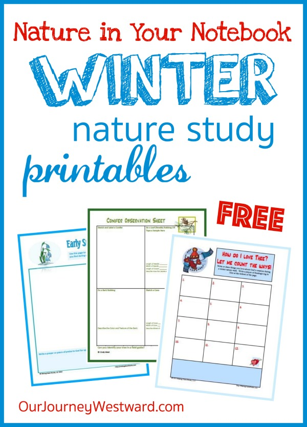 Free Nature in Your Notebook Winter Printables