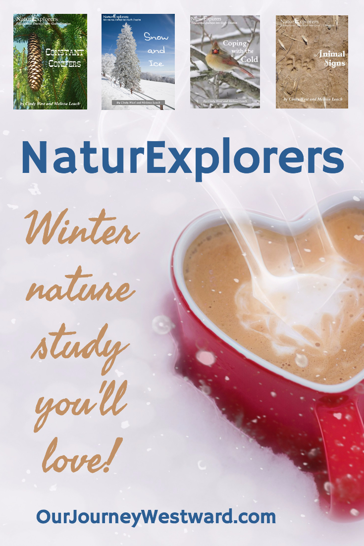 Winter NaturExplorers 735x1102 (Pinterest)